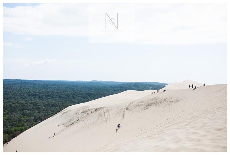 Bordeaux spring time sand dunes