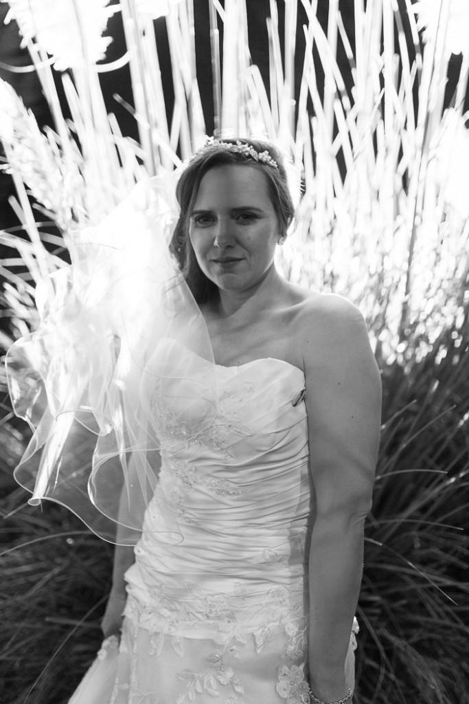 Ben & Claires Wedding pictures-45