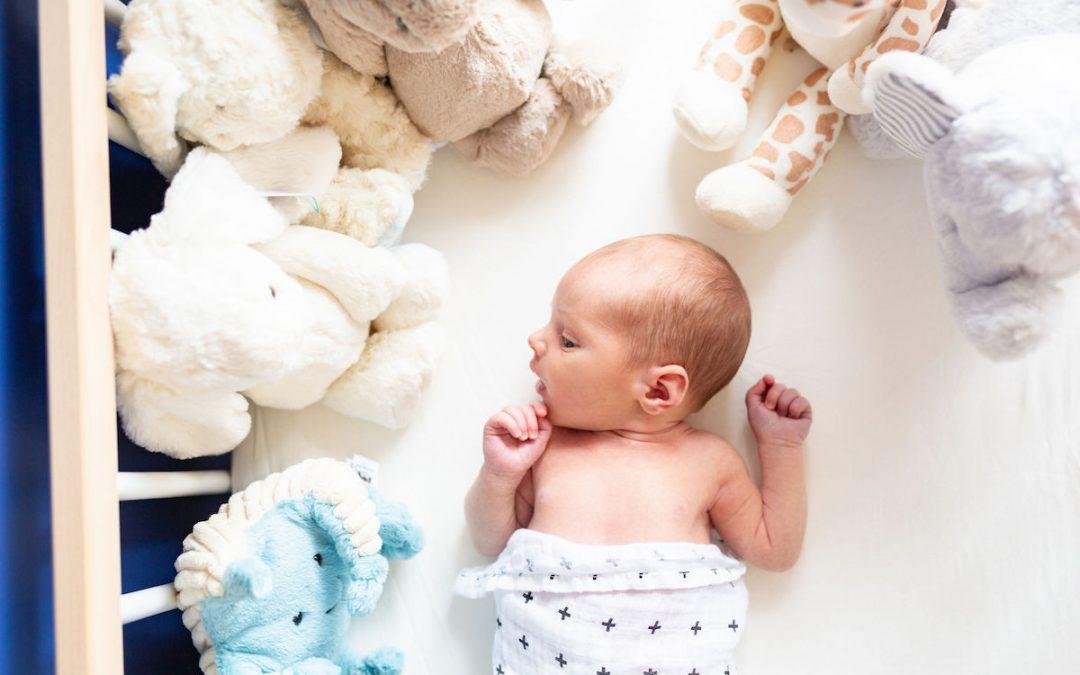 Newborn Photography :Baby Albert