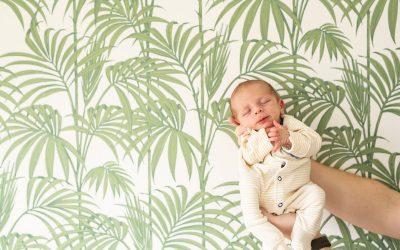 Newborn Photography – Mason Louis Walker